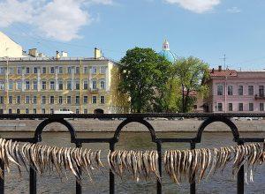 Индивидуальные экскурсии СПб – водные прогулки, запоминающиеся на долго!