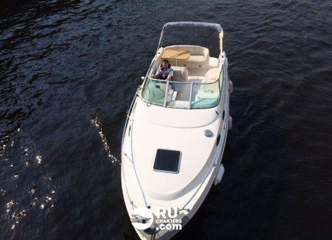 «chaparral Signiature 240» Аренда катера в СПб