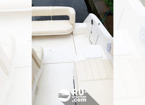 «sea Ray 255» Аренда катера в СПб